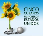 cinco-heroes-girasoles